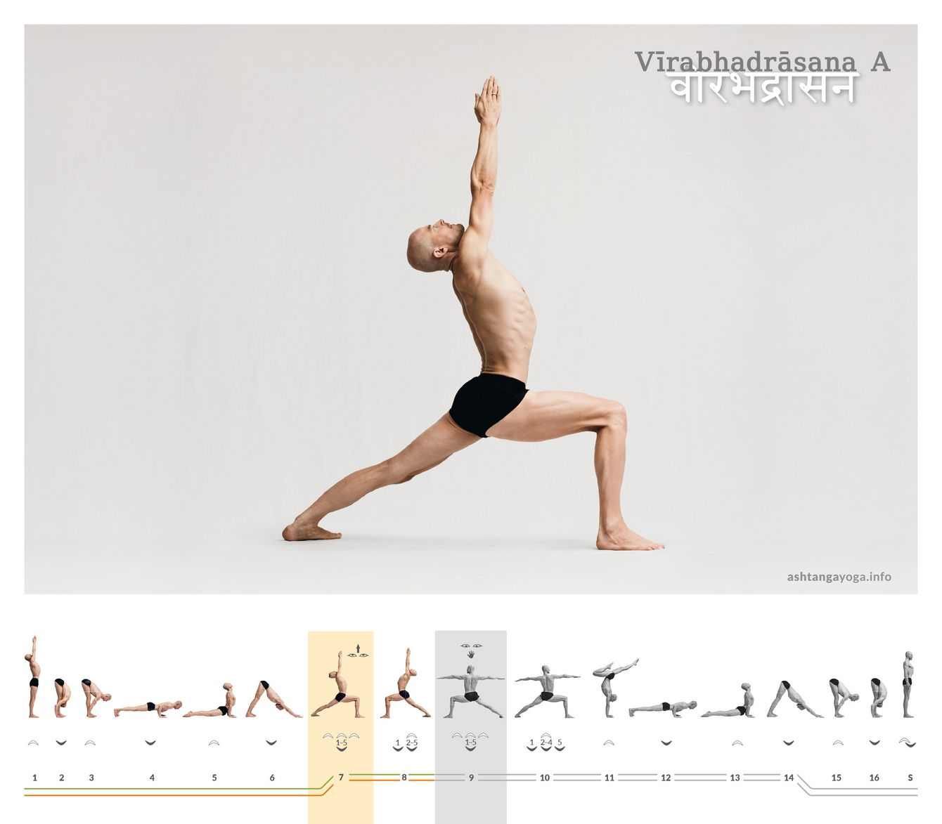 "The ""powerful warrior pose"" is reminiscent of base moves or postures found in a variety of martial arts. In the version - Virabhadrasana, the arms are raised upwards."