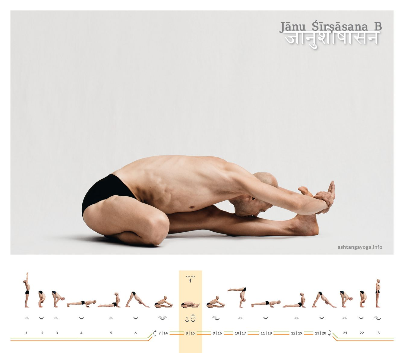 "In the second variant of the ""Head and Knee pose"" the practitioner sets the perineum directly on the heel of the bent leg. This same foot points straight ahead under the thigh of the bent leg - Janu Shirshasana B."
