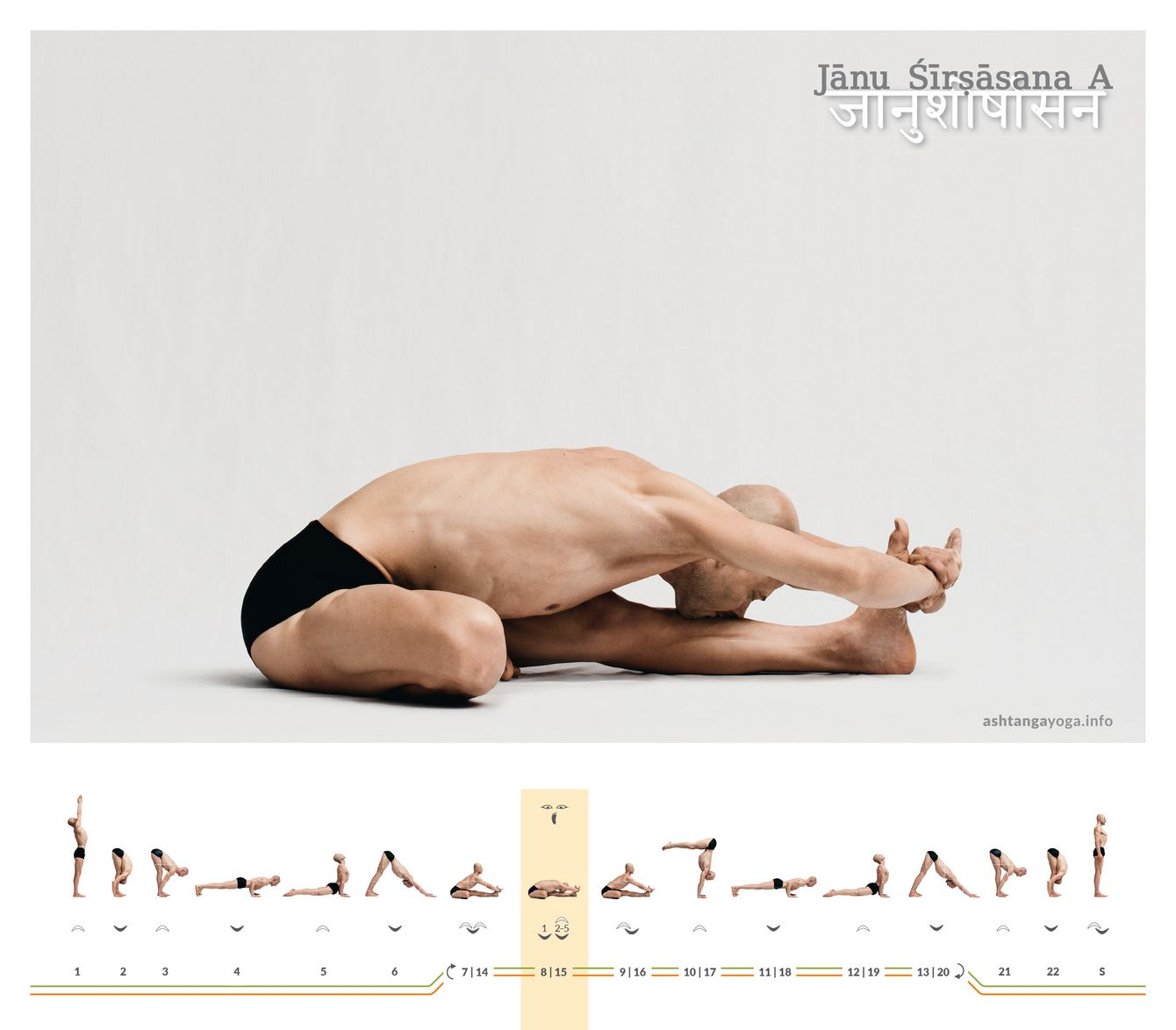"The ""Head and Knee pose"" is an asymmetrical seated pose. One leg is extended and the other is bent with the sole of the foot on the inner thigh of the straightened leg  - Janu Shirshasana A."