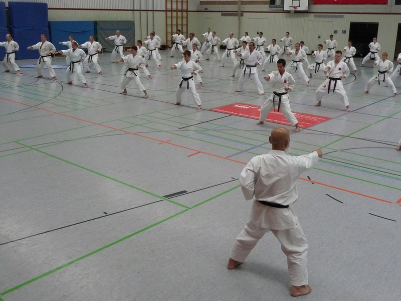 Training techniques with the Head Trainer of the German Karate League, Deutschen JKA-Bundes (in German), video of Sensei Ochi