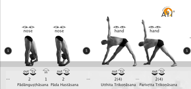 Cheat sheets for the Ashtanga yoga series (PDF