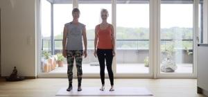 ayi  the international ashtanga yoga information