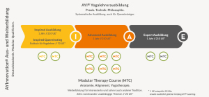The AYI® Teacher Training (Ausbildung) in Detail
