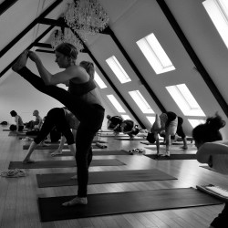 Yoga poses (Asana, poses, postures) and dynamic movement (Vinyasa ...