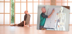 Rolfing & Ashtanga Yoga: The Power of Touch and Movement
