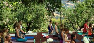 Inspired teacher training (AYI®) - Foundations of Yoga and the AYI® Method